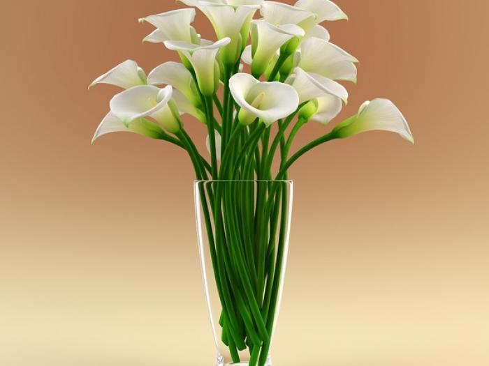 3ds-max-vase-calla-flowers-calla-flower-in-vase-4-msdessi-vase-with-flowers