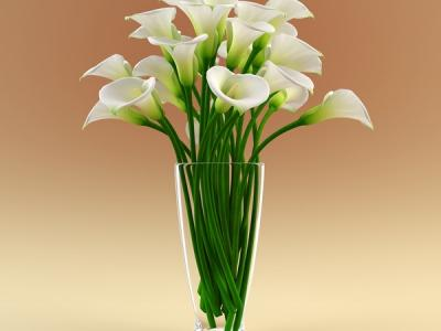 3ds-max-vase-calla-flowers-calla-flower-in-vase-4-msdessi-vase-with-flowers