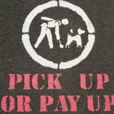 Anti-dog-fouling