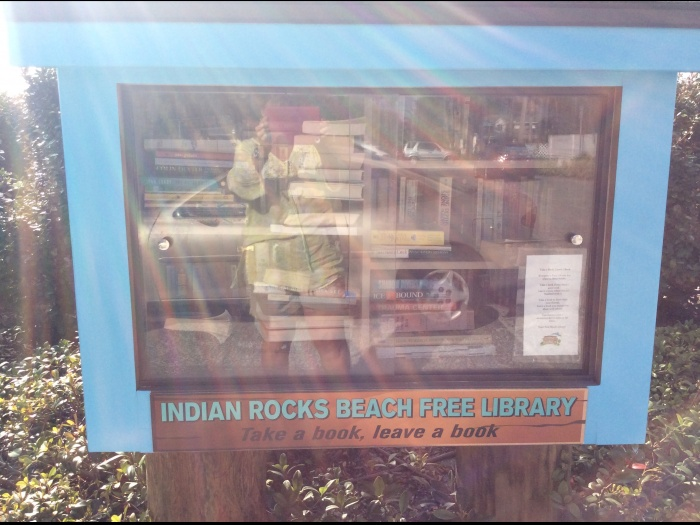 Book Exchange in America (1)