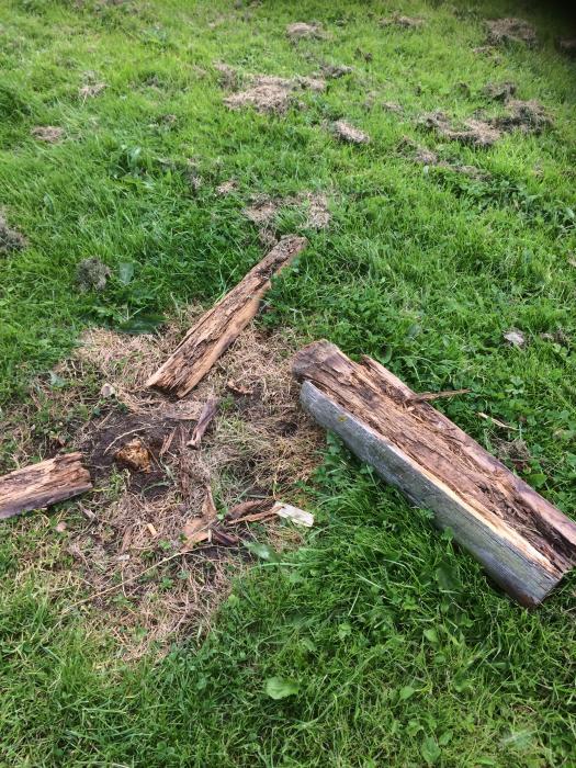 Broken Fence 2 (1)