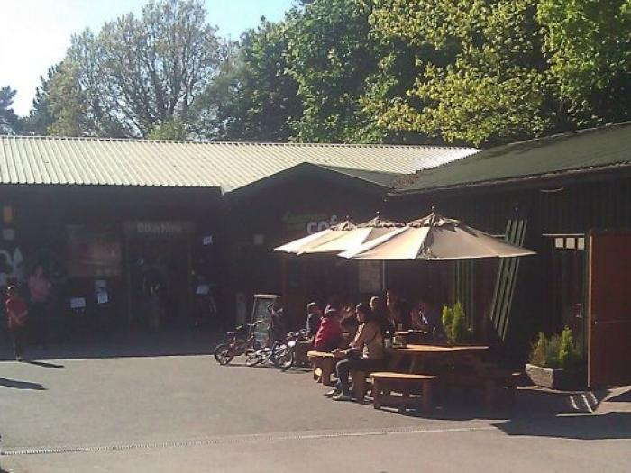 cafe_Delemere Forest
