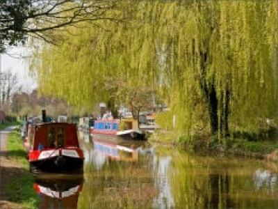 canal christleton (2)