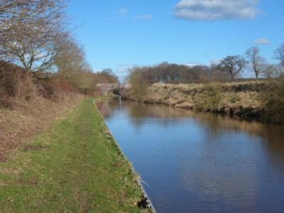 Canal walk January 2013 (19)
