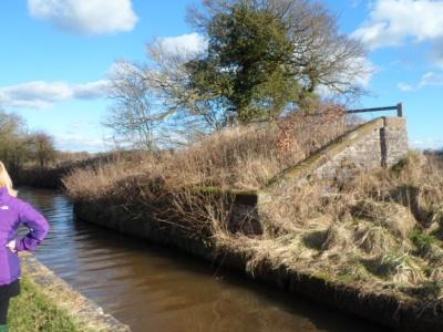 Canal walk January 2013 (21)