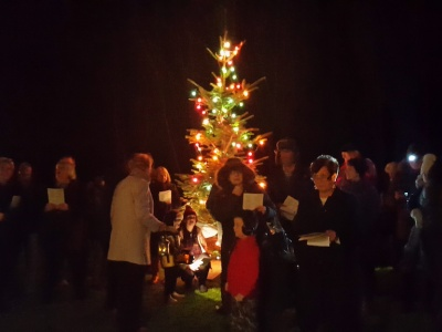 Carols Round the Tree