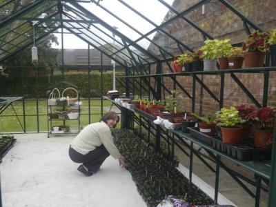 CTARA greenhouse