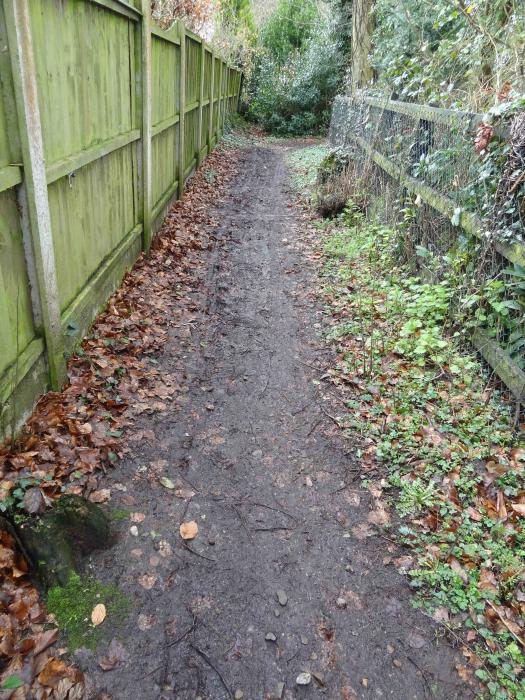 Footpath before