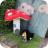 Gnome damage Img_5816