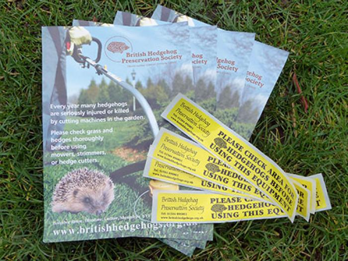 Hedgehog_initiative_flyers