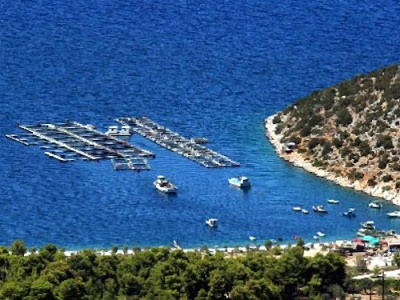 Kefalonia fish farm
