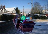 Minsh in sleigh