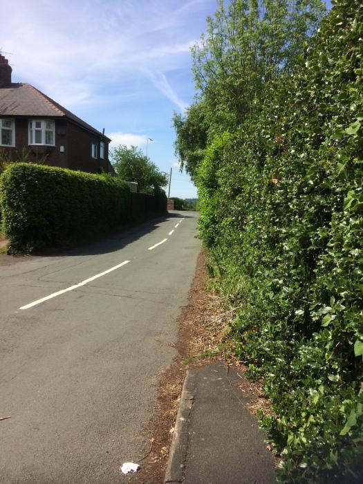 Park Lane 2 (1)