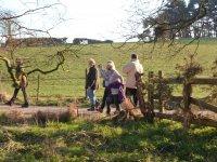 Pheasant Inn walk 2015