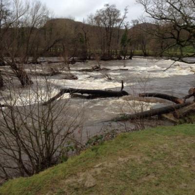 River Dee (3)