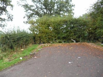 Rubbish Broomheath Lane