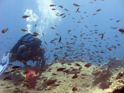 Scuba diving in the Greek Islands