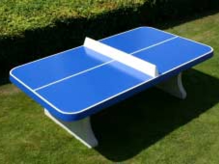 table tennis table 1