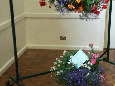 THS 2017 Flower Basket Exhibits 20170819_150048_resized