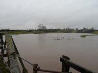 Weaver flood 001