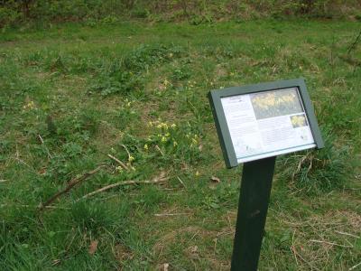 Woodland Signage (1)