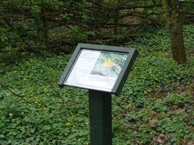 Woodland Signage (3)