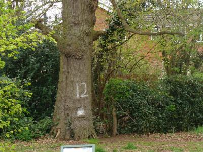 Woodland Signage
