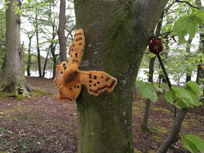 Woolen Wood _butterfly_large