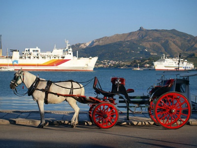 Zante horse carriage